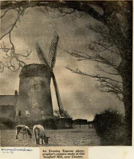 Old Saughall Mill