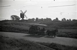 Horses and carriage, Brill Windmill