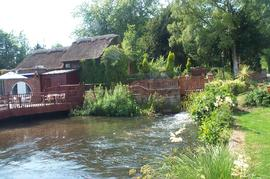 View of the millstream, Ham Mill, Newbury