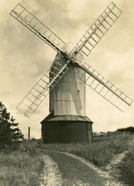 """ ""Jill,"" Clayton, Sussex"""