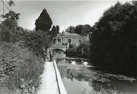 Research Paper Material: Arborfield Hall Farm and Mill (1838 - 1900) - Photograph of Aborfield Hall Mill (1953)