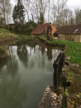 Mill pond, Shutler's Mill, South Petherton