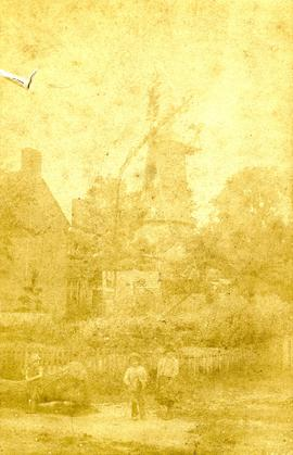 Scene with windmill