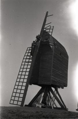 Stanley Freese on sail, Brill Windmill