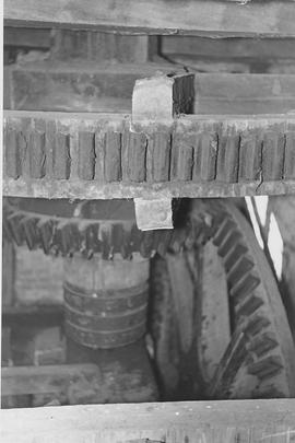 South Newton Mill, South Newton, internal, pit wheel, wallower, spur wheel