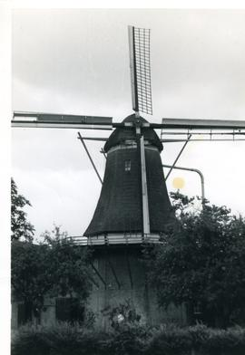 Preserved Dutch smock mill, location unknown (same mill as in GUYB-FW2-013), 1971