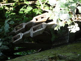 Remains of scoopwheel, High's Mill, Halvergate