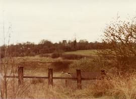 Distant view, conserved smock mill, Little Hadham, Hertfordshire