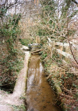 Charlestown Leat - it runs for miles from Luxulyan