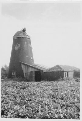 Tower mill, Hempnall, cap derelict, no sails