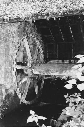 Lower Mill, Basing, remains of wheel