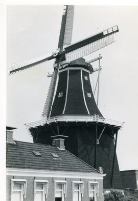 Preserved Dutch smock mill, location unknown (same mill as in GUYB-FW2-014), 1971