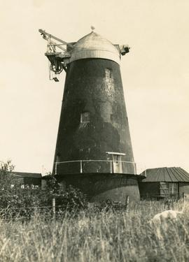 """ ""Jack,"" Clayton, Sussex"""