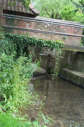 View of the millstream, South Moreton Mill, South Moreton