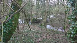 Site of Knights Mill, Bishops Caundle, view of new cut, main sluice and mill pond beyond