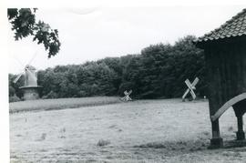 Tower mill, tjasker mill and meadow mill in Arnhem Open Air Museum, Holland, summer 1971