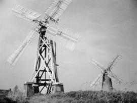"""Drainage Mills, Ludham Bridge, Norfolk"""