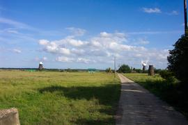 Tower mills, Reedham Marshes