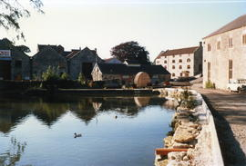 Charlton Brewery Millpond, Shepton Mallet