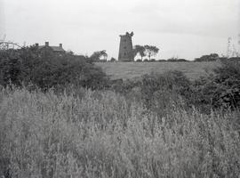 Tower mill, Buerton
