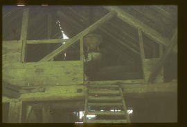 Gunton Park Sawmill, Norfolk,  roof trusses and corn mill