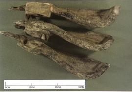 Paddles from 7th century Irish mill