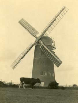 """Waterhall Mill, Patcham, Brighton"""