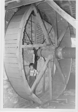 Bere Farm Treadwheel, Warnford, boy in treadwheel