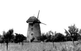 Stembridge Mill, High Ham, Somerset