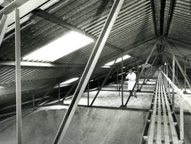 Grain store interior - roof level