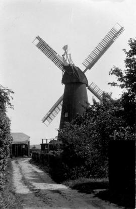 Swingate Mill, Guston, viewed from path