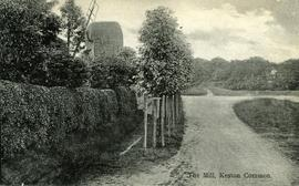 The Mill, Keston Common