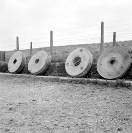 Several millstones leaning against a bank, West Mill Farm Mill, Stalbridge