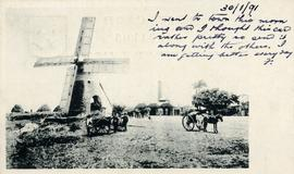 Mill and carts, Barbados