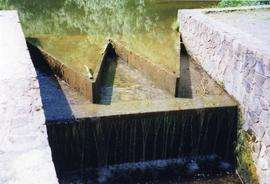 Photograph of the weir to a horizontal watermill, Ferrycarrig, Wexford, Ireland
