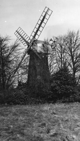 Tower mill, Shirley, Croydon, with the mill facing south west