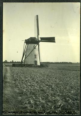 Nieuwland near Middelburg, Tower Mill at work