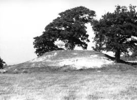Mound defining site of mill