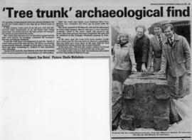 """ 'Tree trunk' archaeological find"""