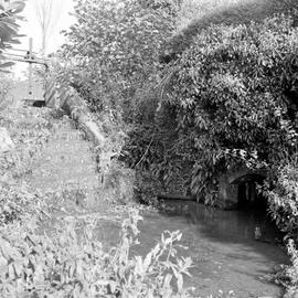 Sluice and mill race, Barcombe Farm, Alton Pancras