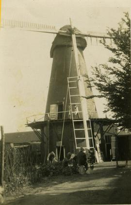 Tower mill, Stanford, with sweep being raised