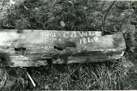 Graffiti on wooden remains, Moreton