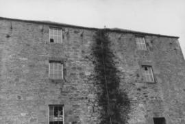 Close-up view of vegetation growing on exterior, Heatherslaw Mill, Ford