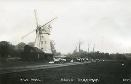 Smock mill, South Ockendon, surrounded by sheep