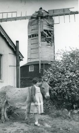 Downs Mill, Bexhill, derelict with child and donkey