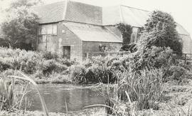 Downstream view, Water Barn Wheel, Wool