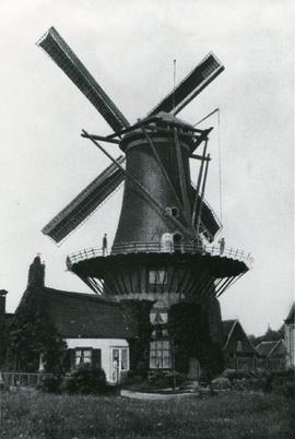 Unidentified Dutch tower mill