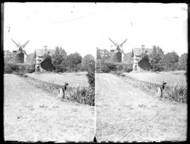 Two prints of exterior view of tower mill and woman tending field