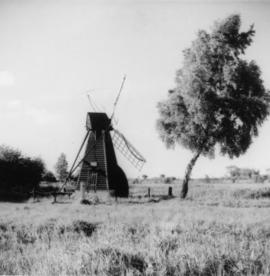 Norman's Mill, Wicken Fen, showing tail poles and furled sails