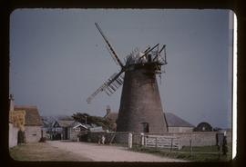 Medmerry Mill, Selsey, derelict, with cap and four damaged sails